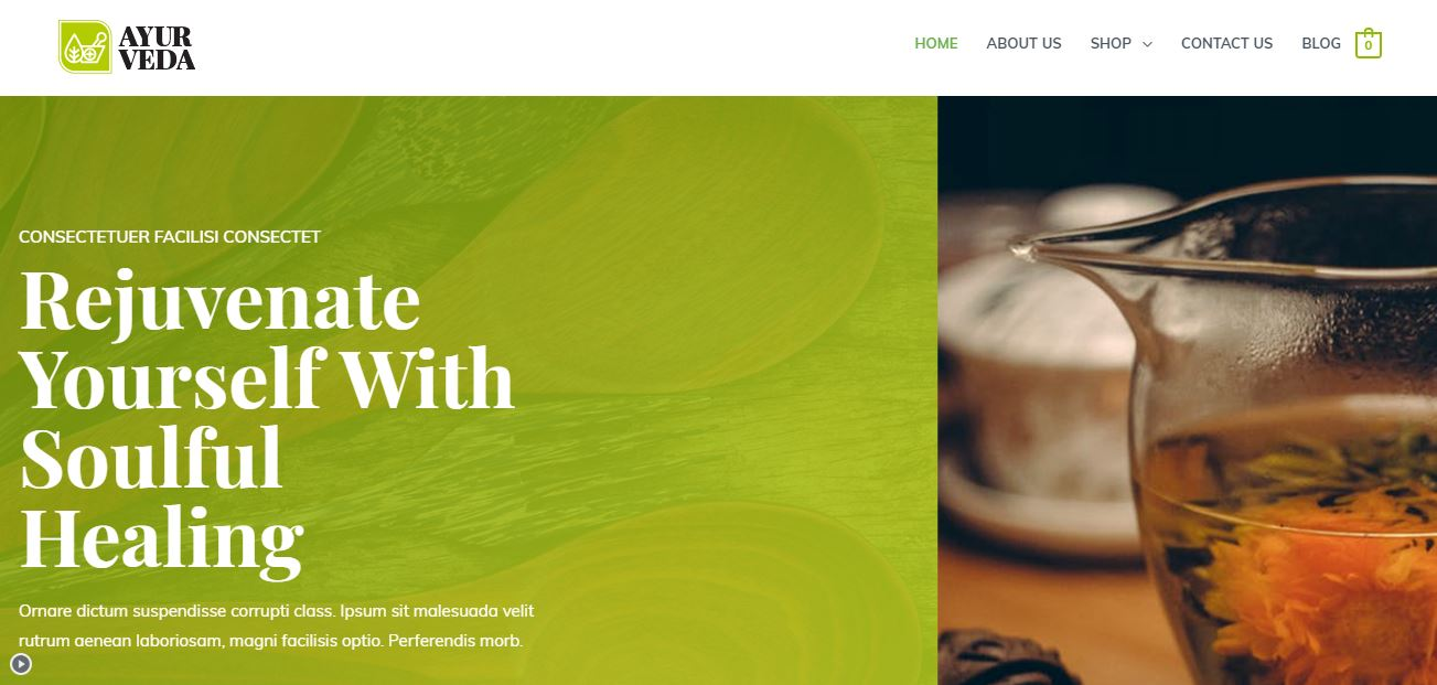 Astra Theme Demo Website